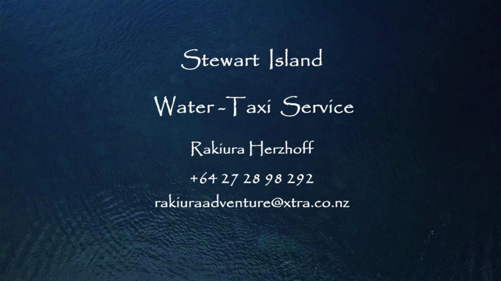 Water taxi services at your request
