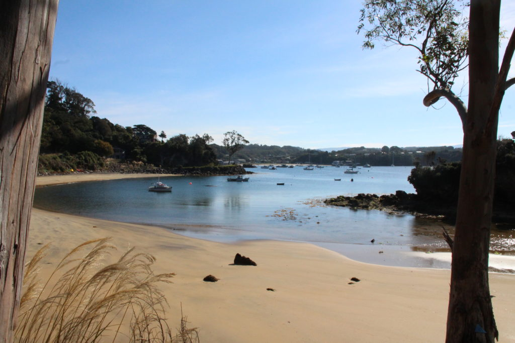 Lonnekers beach, Stewart Island