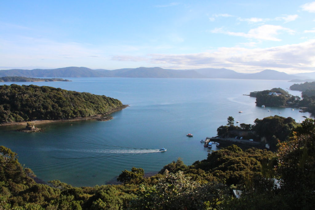 Kaian at Golden Bay Stewart Island