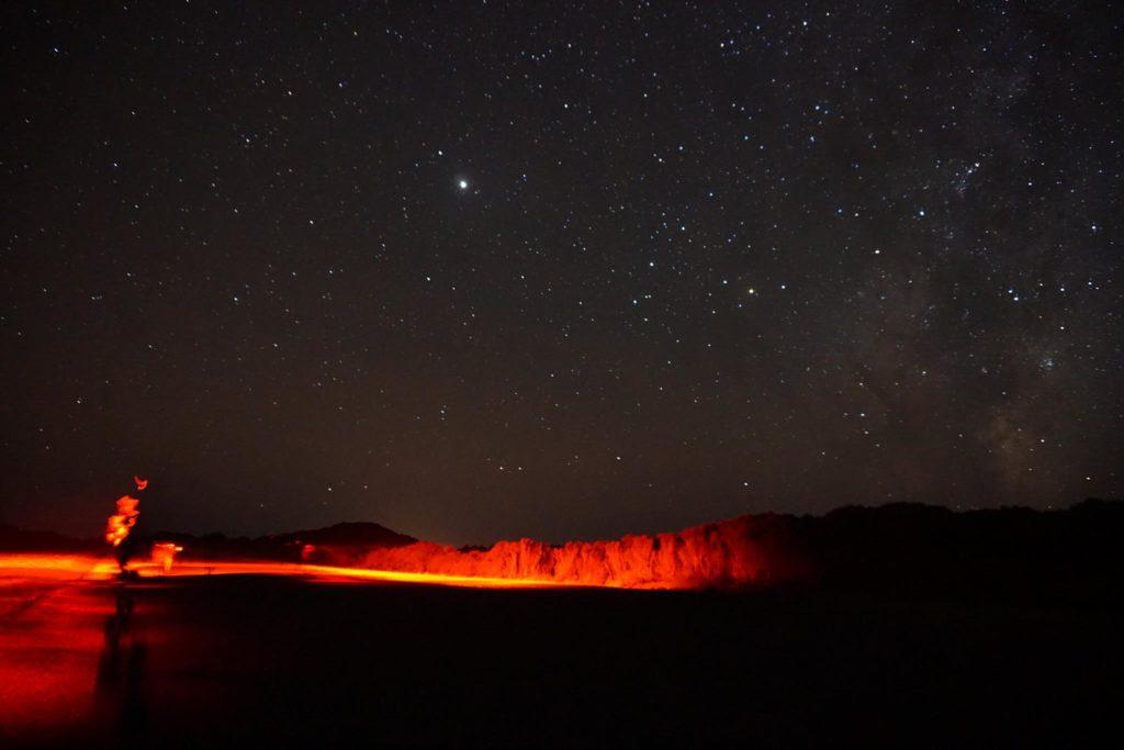 Kiwi Spotting Guided Walks at Night