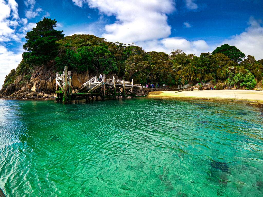 Sydney Cove, Ulva Island, Stewart Island