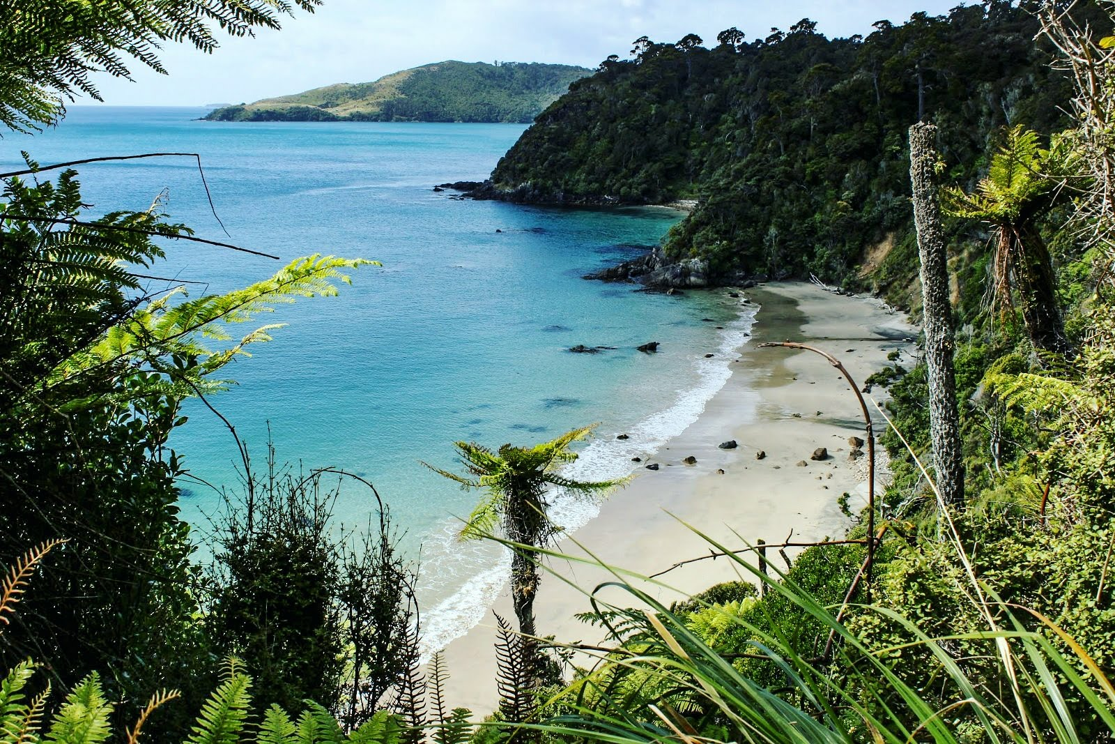 Beach views on the Rakiura great walk