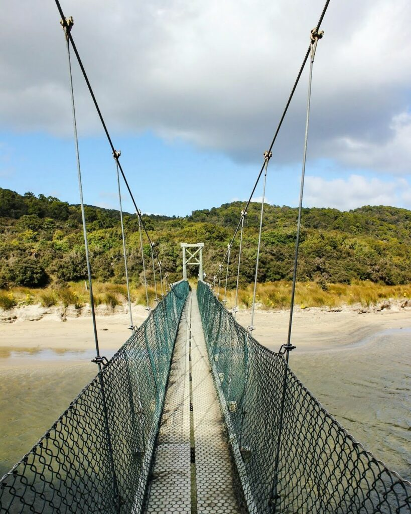 Swing bridge on Rakiura tramping track