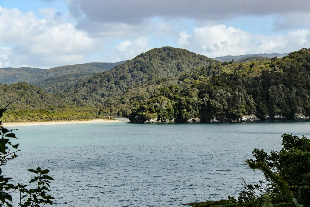 View along the Rakiura tramping track